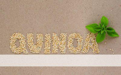 What Do I Do With Quinoa?